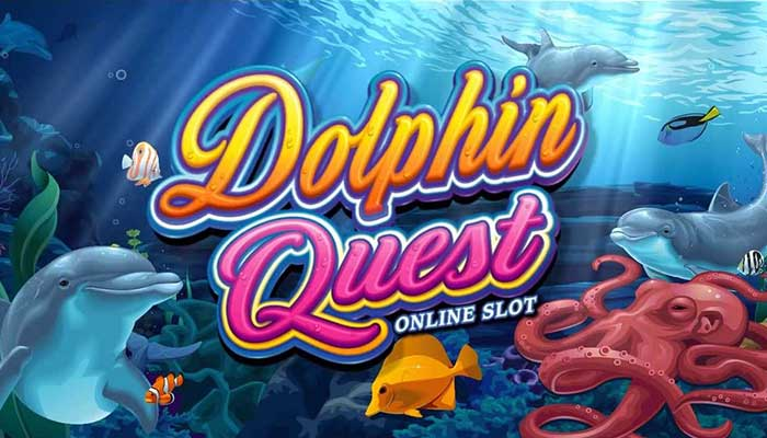 dolphin quest thumb